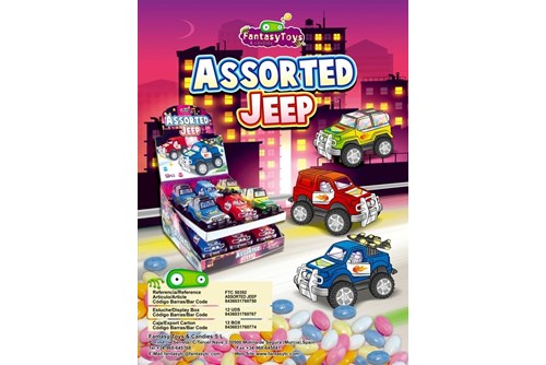 ASSORTED JEEP  12U   X L  _2312_670122
